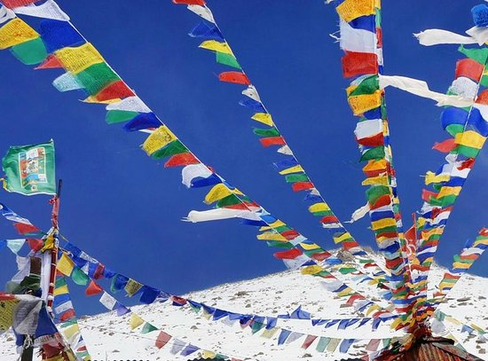 know some interesting facts about tibetan flag - खबर लाजमी